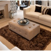 charlotte_healthy_carpet_upholstery_green_cleaning