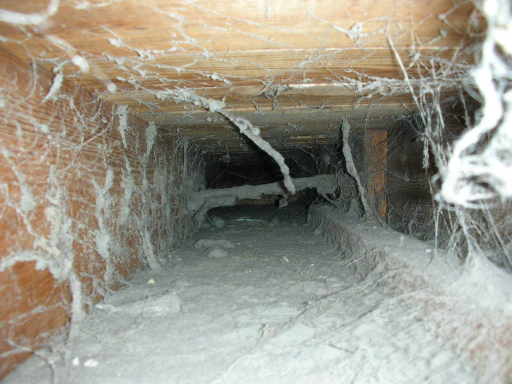 Mite_E_Ducts_Duct_Cleaning_8