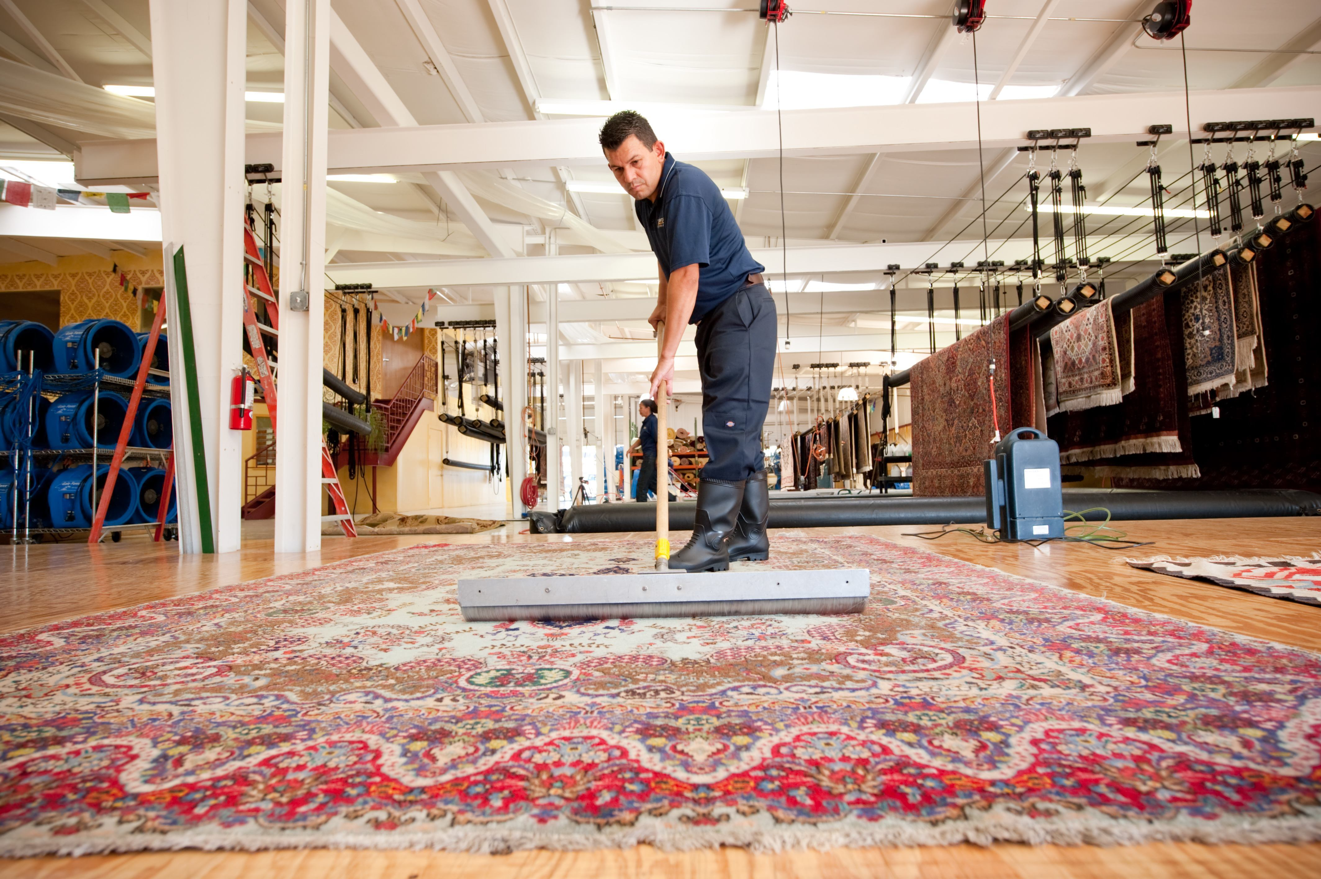 Rug Cleaning In My Steam Green Carpet Cleaning