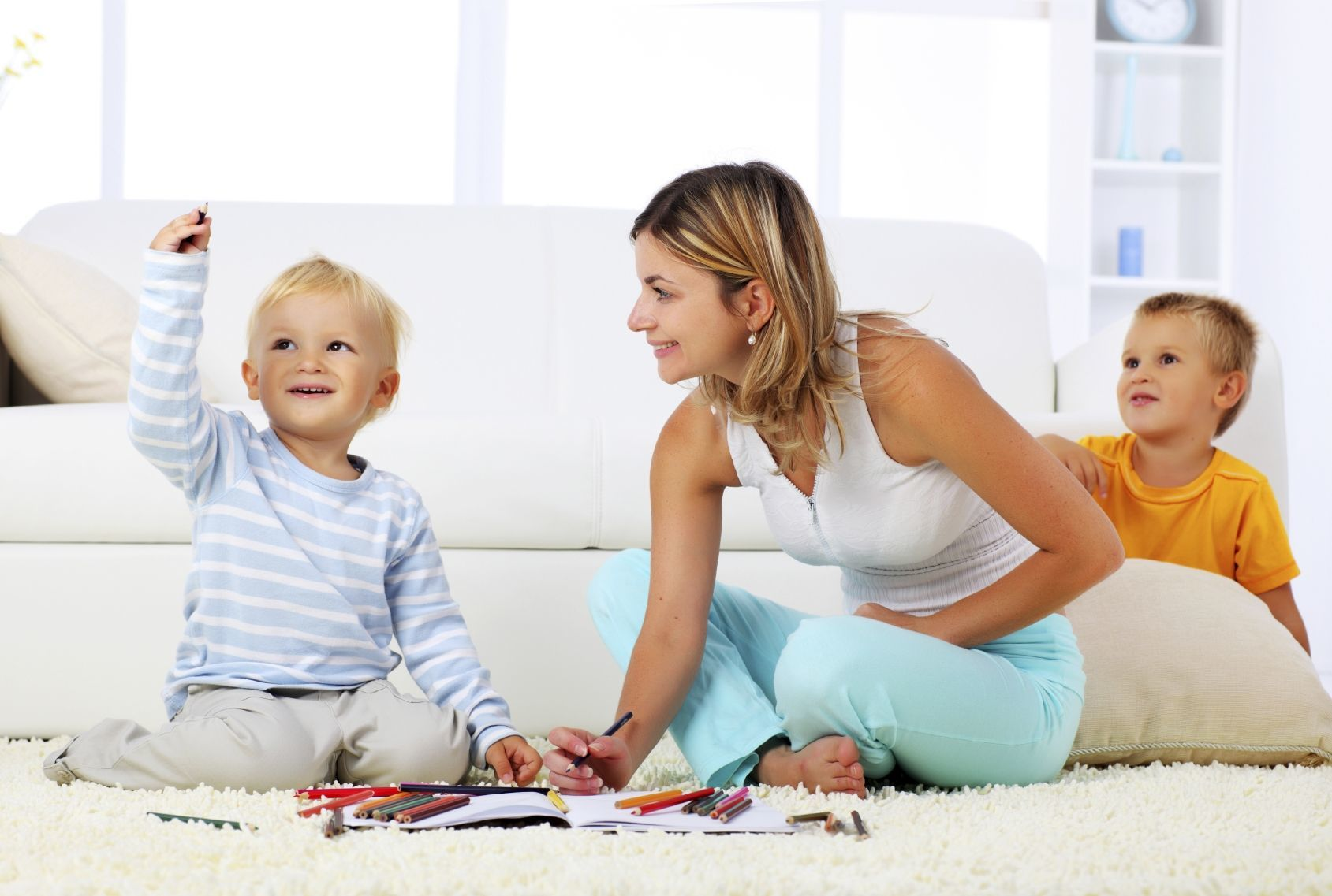 mclean carpet  cleaning