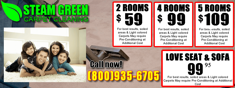 Coupons in My Steam Green Carpet Cleaning Services